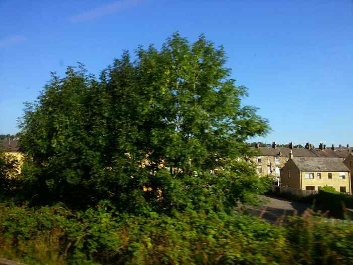 Traveling through New Mills on the Main Sheffield to Stockport line