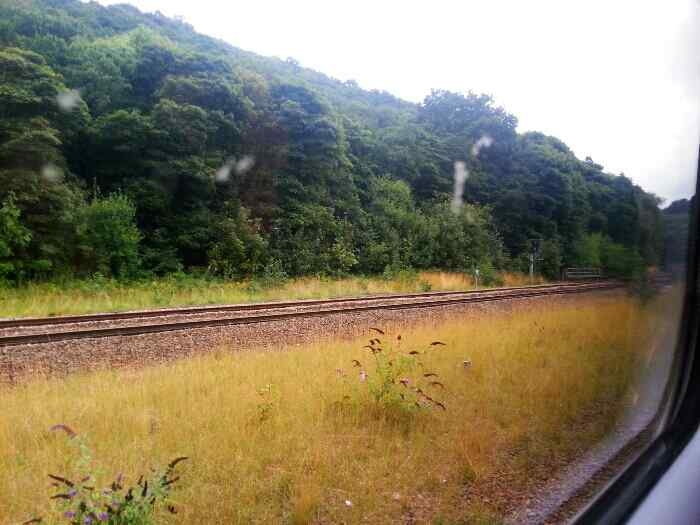 View to the London line from Dore Station