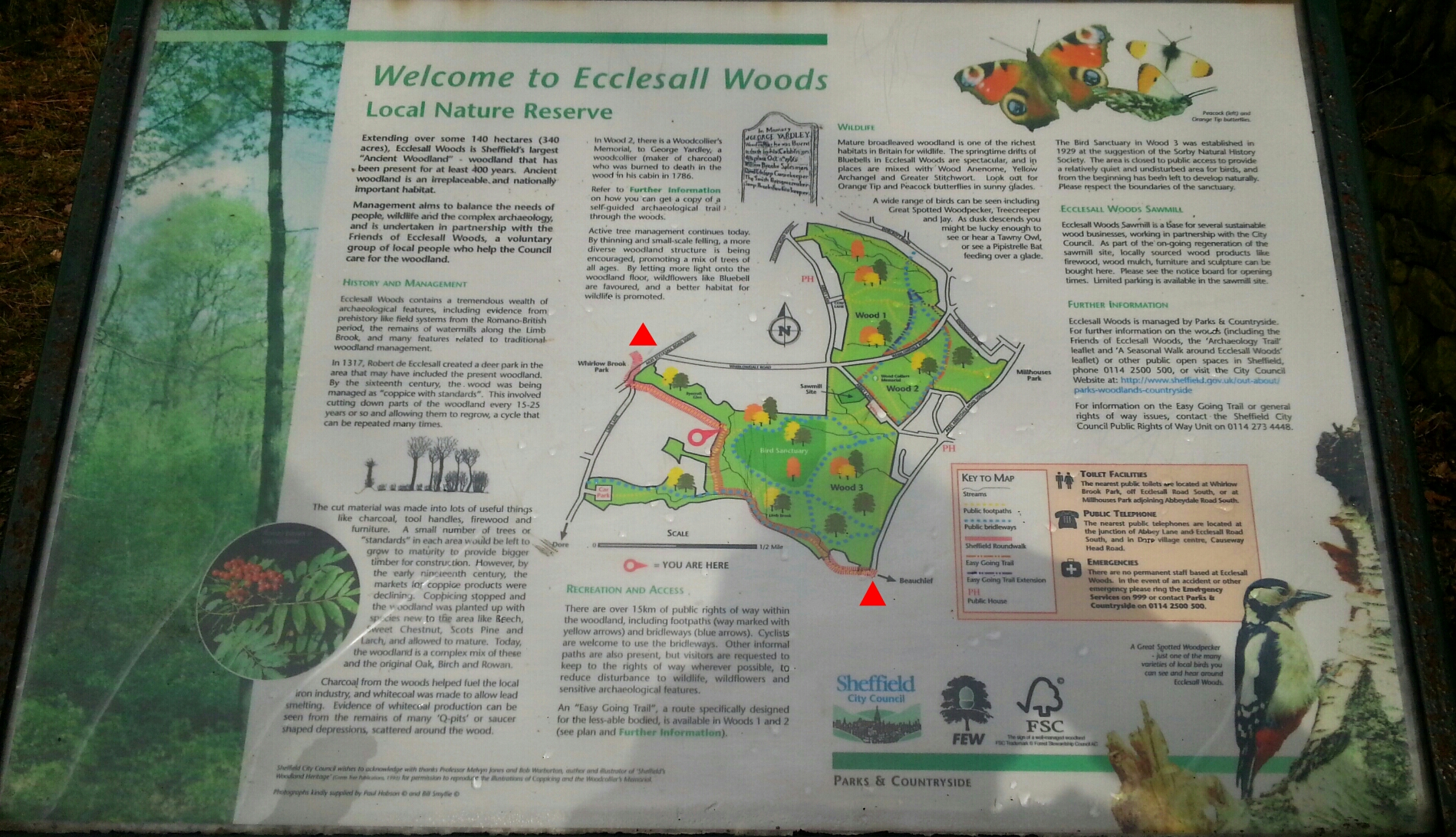 Map of Ecclesall Woods.