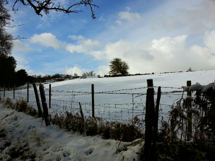 Snowy field at the head of the Limb Valley