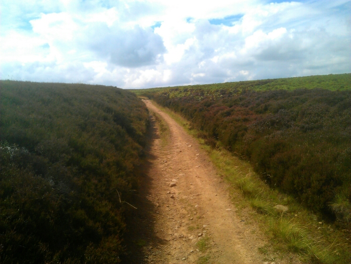 Path on the moors above Totley